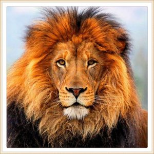 3-2-1-Go to Sleep! Here's Why... (Part 2), a lion head