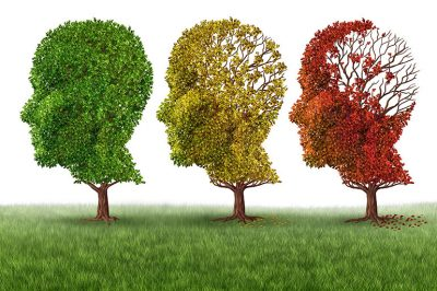 3-2-1-Go to Sleep! Here's Why... (Part 2), Head shaped trees in fall progression. Memory loss concept