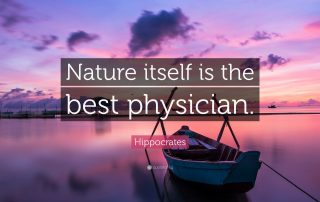 Nature Itself is the Best Physician