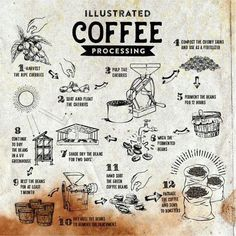 The Good & Bad About Coffee